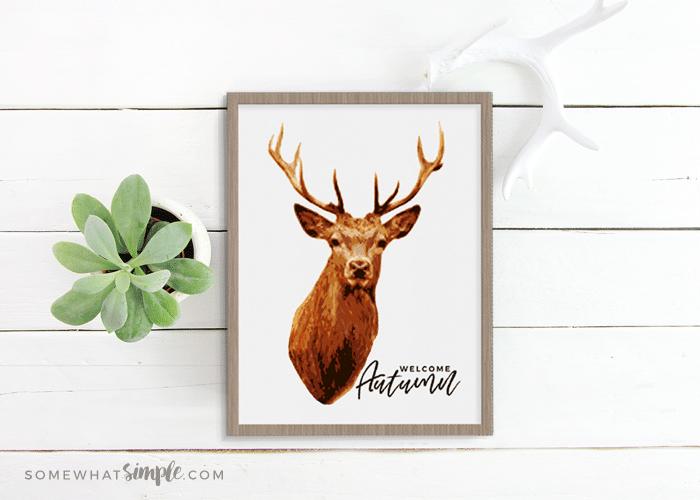 Deer Prints – Free Printable Deer Decor