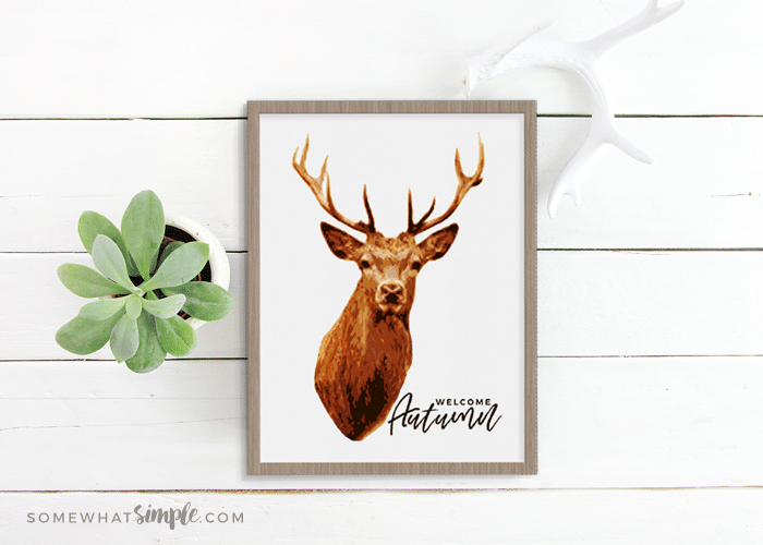 Deer Prints – Free Printable Deer Decor