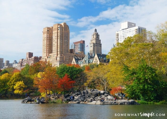New York City Travel – Mini Guide of Things To Do in The Fall