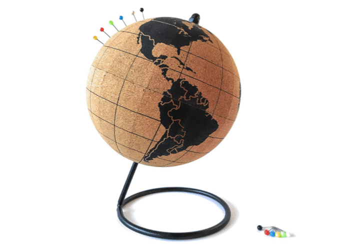 a globe with pins