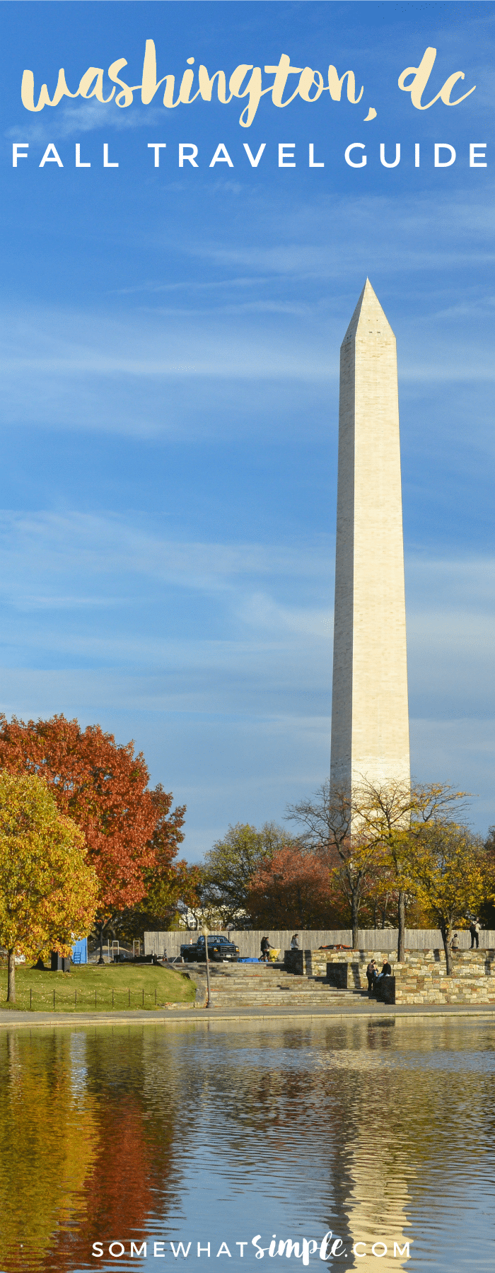 Before you head to the nation's capitol, we have some tips and suggestions we'd like to share. Here is our Washington DC Travel Guide.