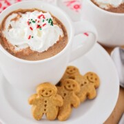 a glass mug filled with gingerbread hot chocolate topped with whipped cream