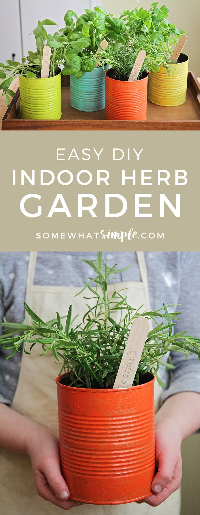 This easy to make indoor herb garden is the perfect project to do with the kids. Add a touch of green to your kitchen and enjoy fresh herbs year round! #gardening #gardenideas #gardeningtips #herb #easydiy #summertime  via @somewhatsimple