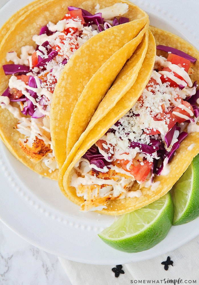 looking down on a white plate with two tilapia fish tacos topped with tomatoes, taco sauce, cheese and lettuce