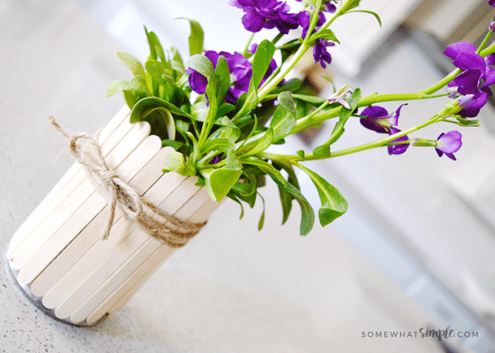 Popsicle Stick Flower Pots Tutorial From Somewhat Simple