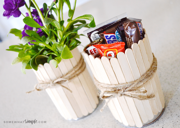 Somewhat Simple & Popsicle Stick Flower Pots - Tutorial From Somewhat Simple