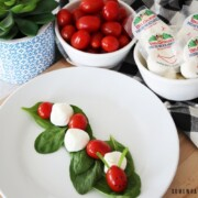 caprese bites made with cherry tomatoes and mozzarella balls forming a caterpillar on a bed of lettuce