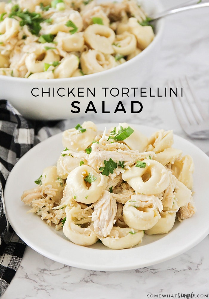 the best tortellini salad