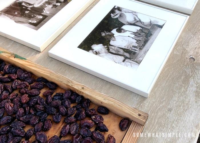 California Dried Prunes