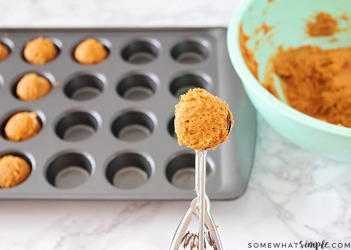 a scoop filled with pumpkin cookie batter being held over a mini muffin tin