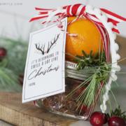 christmas stove top potpourri gift