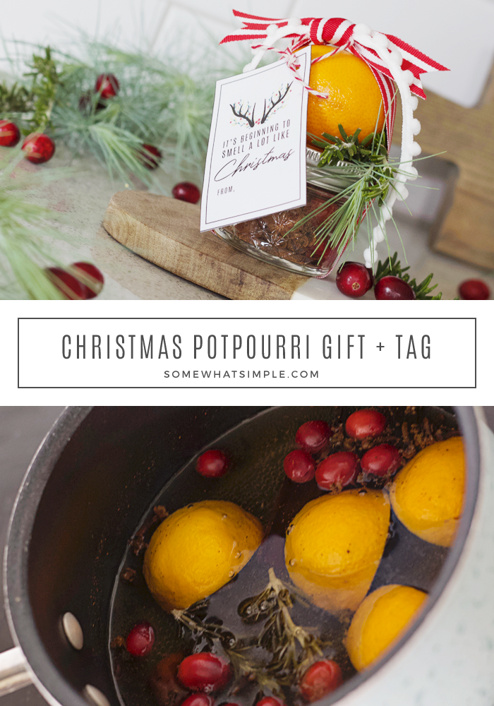 christmas potpourri neighbor friend gift idea tag diy how to tutorial cranberries orange cinnamon stick cloves rosemary nutmeg