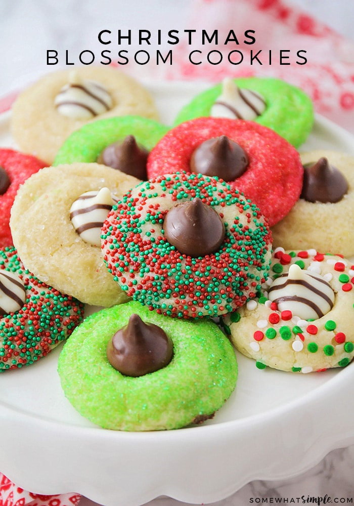 Christmas Blossom Cookies Easy Christmas Cookies Somewhat Simple