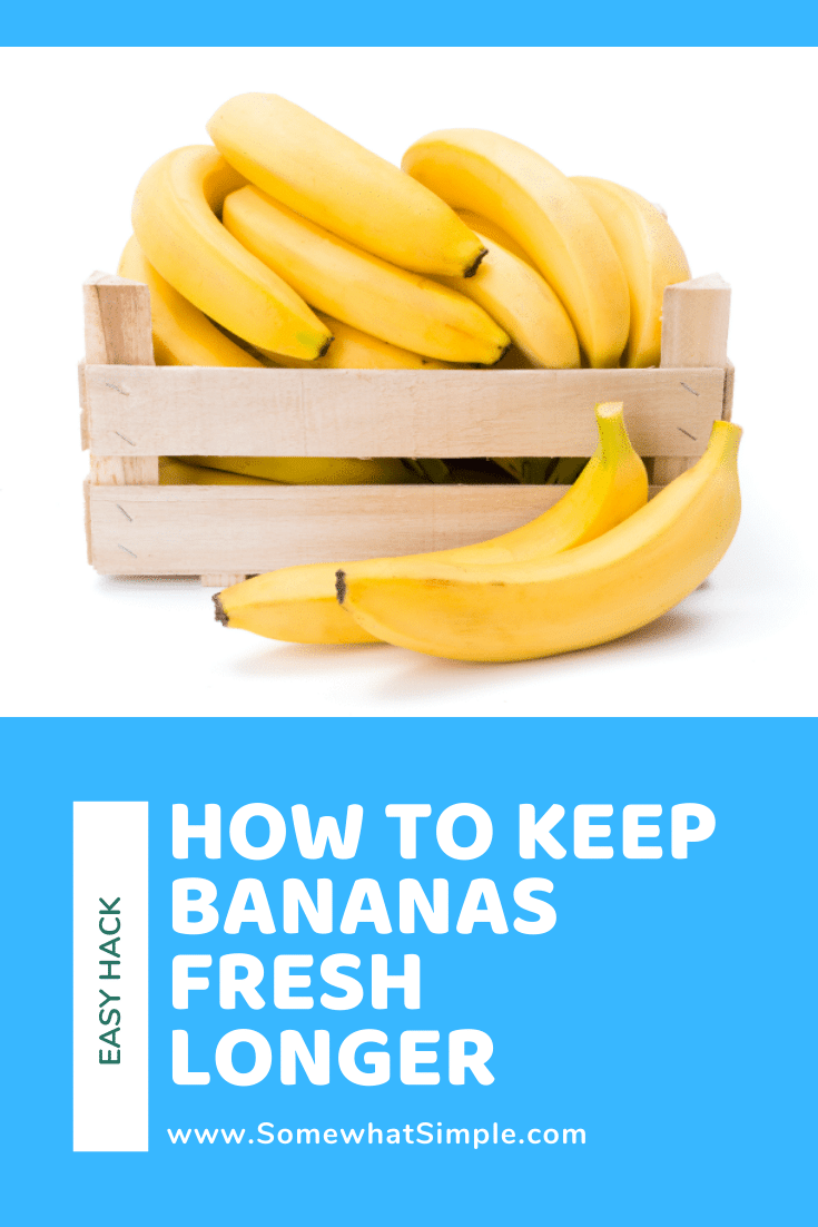 A simple tip on how to keep bananas fresh longer that really works! This simple kitchen hack is super easy and can help keep your bananas from getting too ripe before you use them. #howtokeepbananasfresh #keepbananasfreshlonger #keepingbananasfreshlonger #howtokeepbananasfresh #freshbananashack via @somewhatsimple