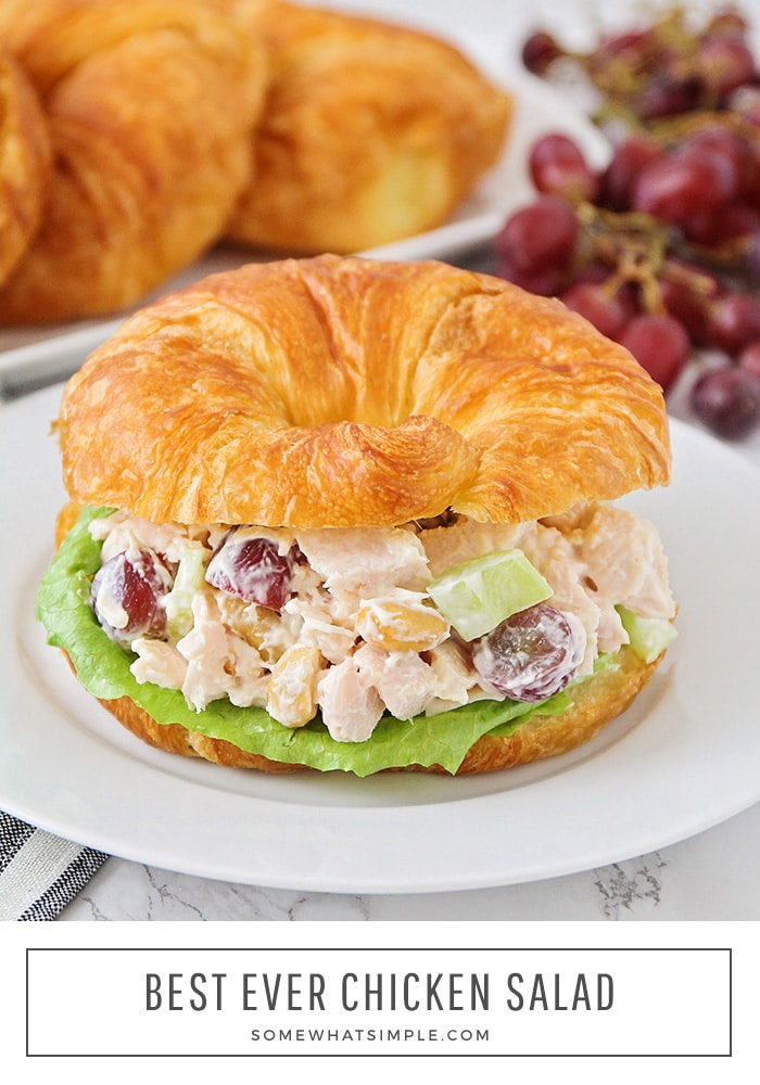 Easiest Chicken Salad Sandwich Recipe Somewhat Simple