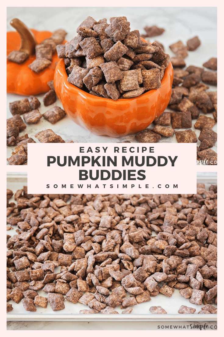 These delicious pumpkin muddy buddies are made with cookie butter, chocolate, and a little pumpkin spice. This is a perfect fall treat for those who want to enjoy a delicious muddy buddy treat without peanut butter.  Watch out, your life is about to get a whole lot sweeter!#pumpkinMuddyBuddiesRecipe #chocolatepumpkinChexMixrecipe #pumpkinmuddybuddypuppychow #howtomakepumpkinmuddybuddies #chexmixpumpkinpuppychow #muddybuddieswithoutpeanutbutter via @somewhatsimple