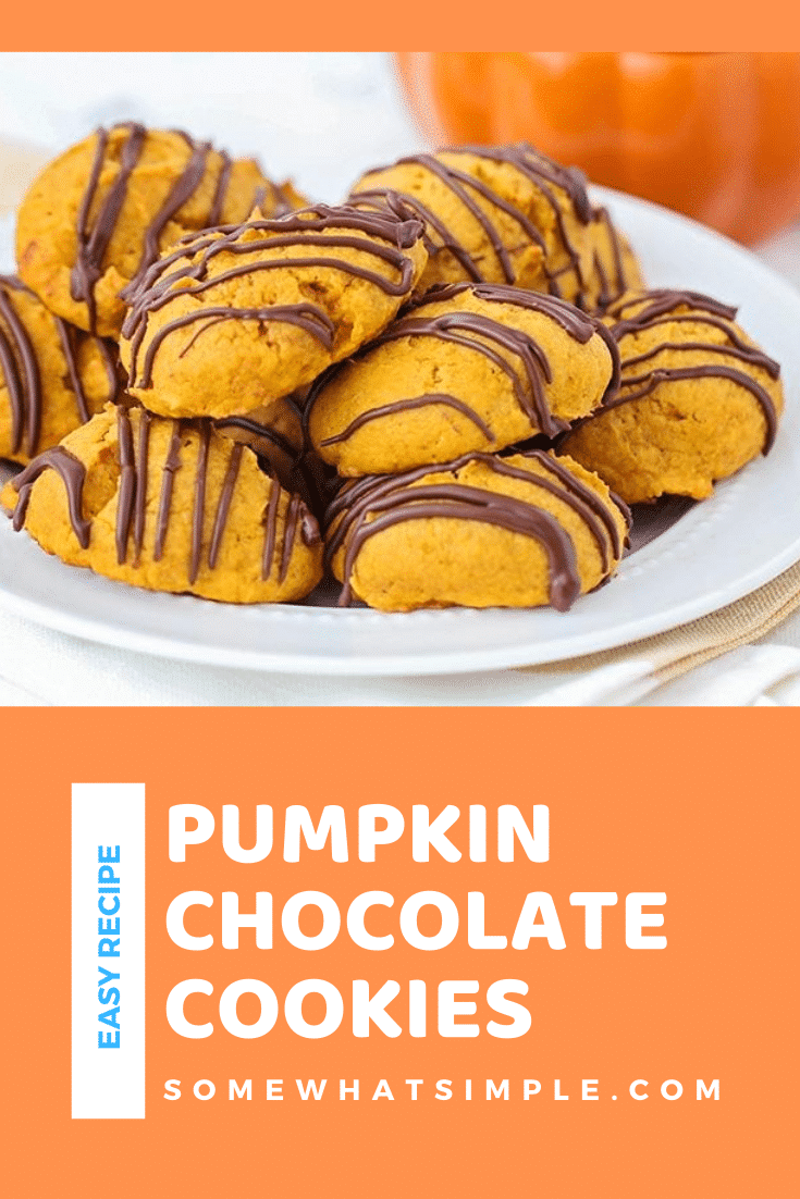Grab a tall glass of milk and get ready for these amazing and super easy chocolate glazed pumpkin cookies! Made from scratch, these cookies turn out soft and fluffy every time. It's the perfect fall cookie recipe that you won't be able to stop eating. #chocolateglazedpumpkincookies #chocolateglazedpumpkincookierecipe #easypumpkincookies #pumpkincookiesfromscratch #pumpkinchocolatecookies via @somewhatsimple
