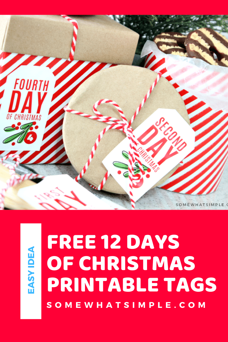 Countdown to Christmas by playing Secret Santa to your neighbors, co-workers and friends! Whether you're giving baked goods, small gifts, or a partridge in a pear tree, these 12 days of Christmas tags are a great way to tie everything together! Download your free copy of these adorable printable gift tags today! via @somewhatsimple
