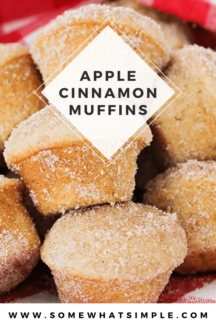 These apple cinnamon muffins are so soft, sweet and have the perfect apple flavor. These muffins are baked to perfection and are covered with an amazing cinnamon sugar topping. I promise, you won't taste anything better! This really is the best cinnamon apple muffin recipe you'll ever try! via @somewhatsimple