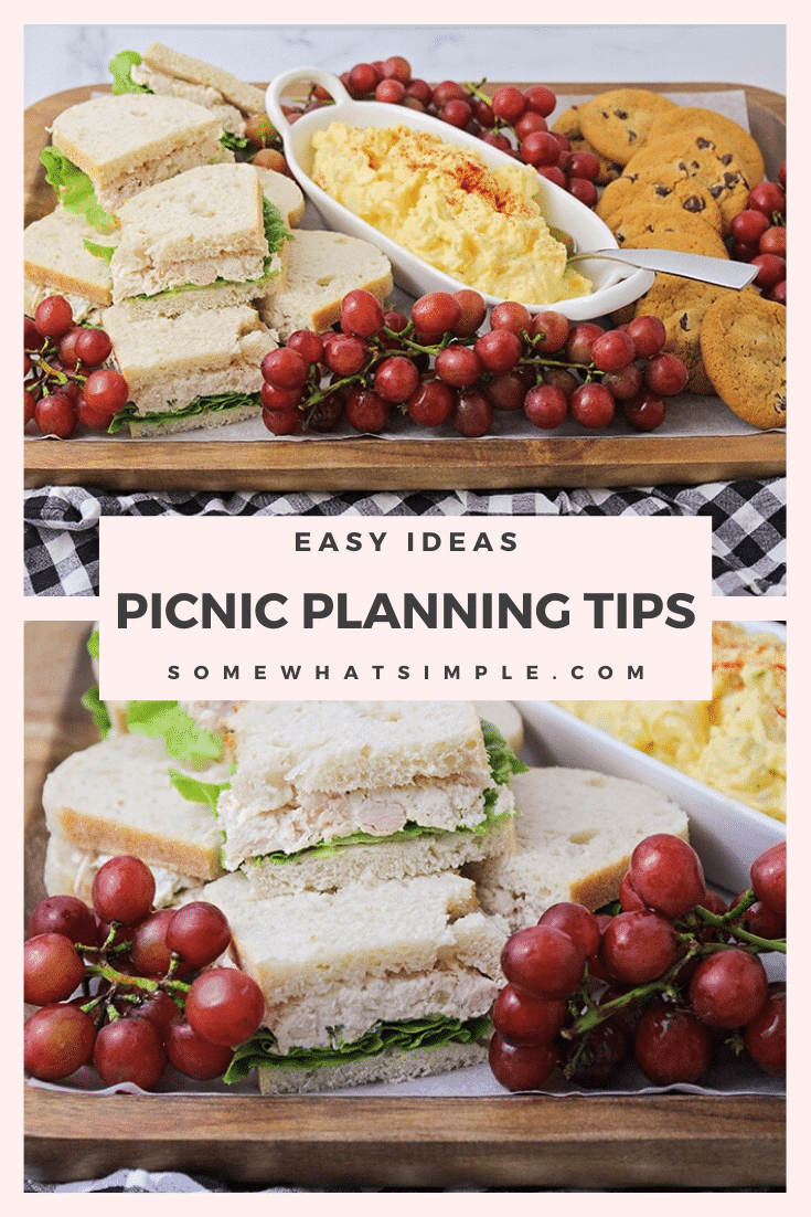 Picnics are a fun way to celebrate the summer with family and friends. These simple tips and tricks make it easy to throw the perfect picnic and enjoy delicious food! #picnic #picnictips #picnicplanning #summerideas via @somewhatsimple
