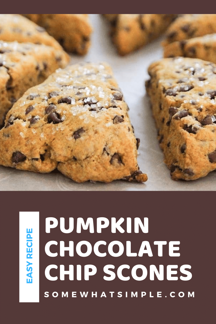Pumpkin Scones are packed with flavor and loaded with chocolate chips! They are moist and tender and couldn't be any easier to make! They're the perfect way to begin your fall morning. #pumpkinscones #easypumpkinscones #pumpkinsconesrecipe #pumpkinchocolatechipscones #chocolatepumpkinscones via @somewhatsimple