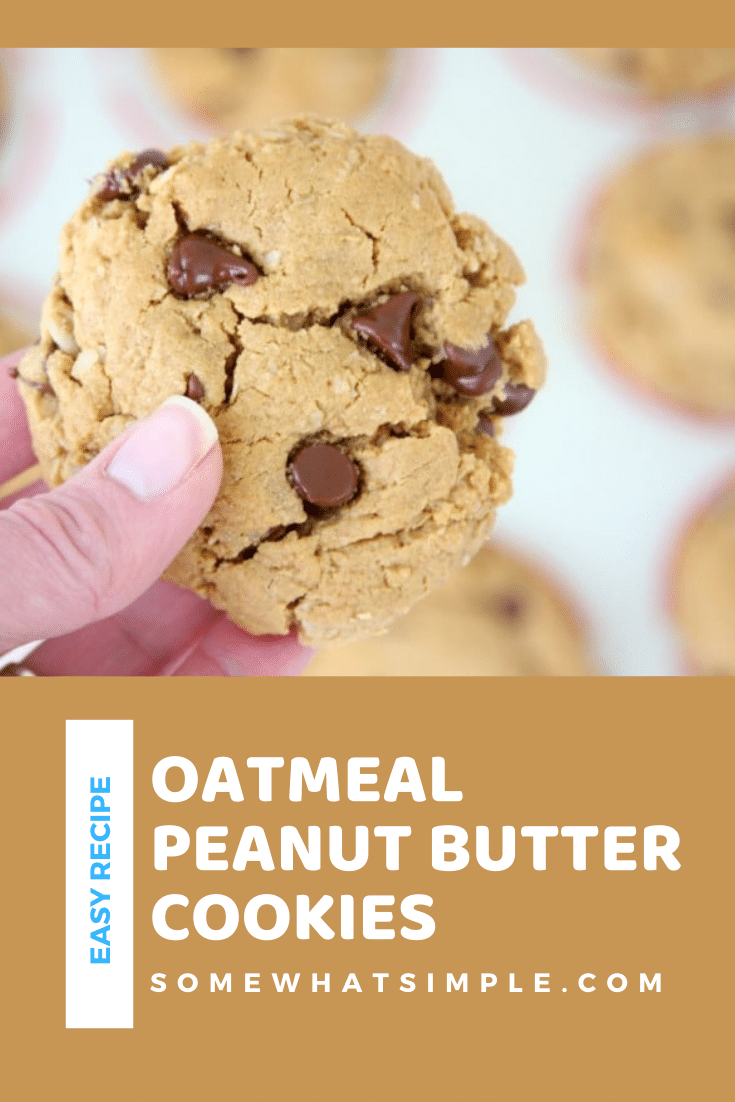 These oatmeal peanut butter cookies are loaded with chocolate chips and need only 7 ingredients. Plus, they're gluten free so everyone can enjoy them! Now pass the milk and let's start baking! via @somewhatsimple