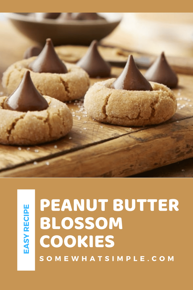 Peanut butter blossoms are an easy holiday cookie recipe that are filled with the delicious combination of peanut butter and chocolate. These cookies are made with just a few simple ingredients and make the perfect holiday dessert. via @somewhatsimple