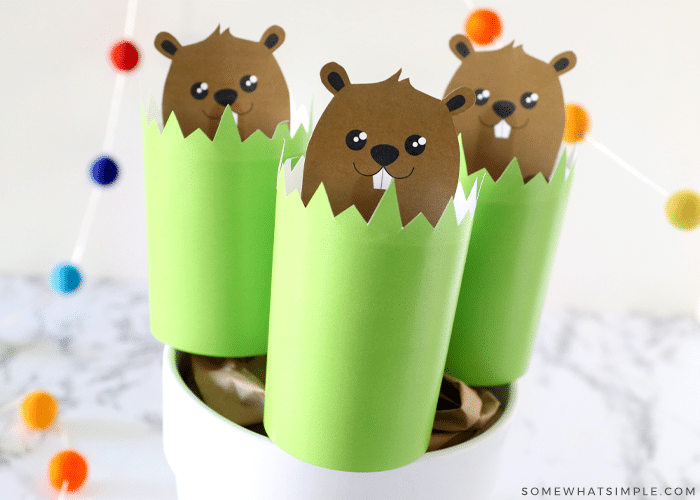 groundhog craft with puppets for groundhogs day