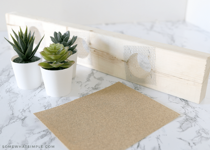 wood board, succulent plant and sand paper