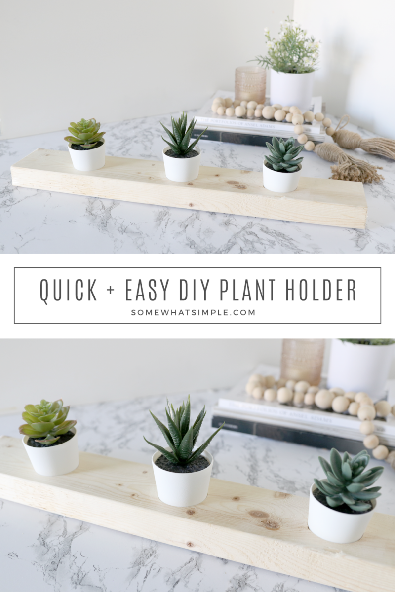 collage of pictures showing the step by step process of creating a succulent holder