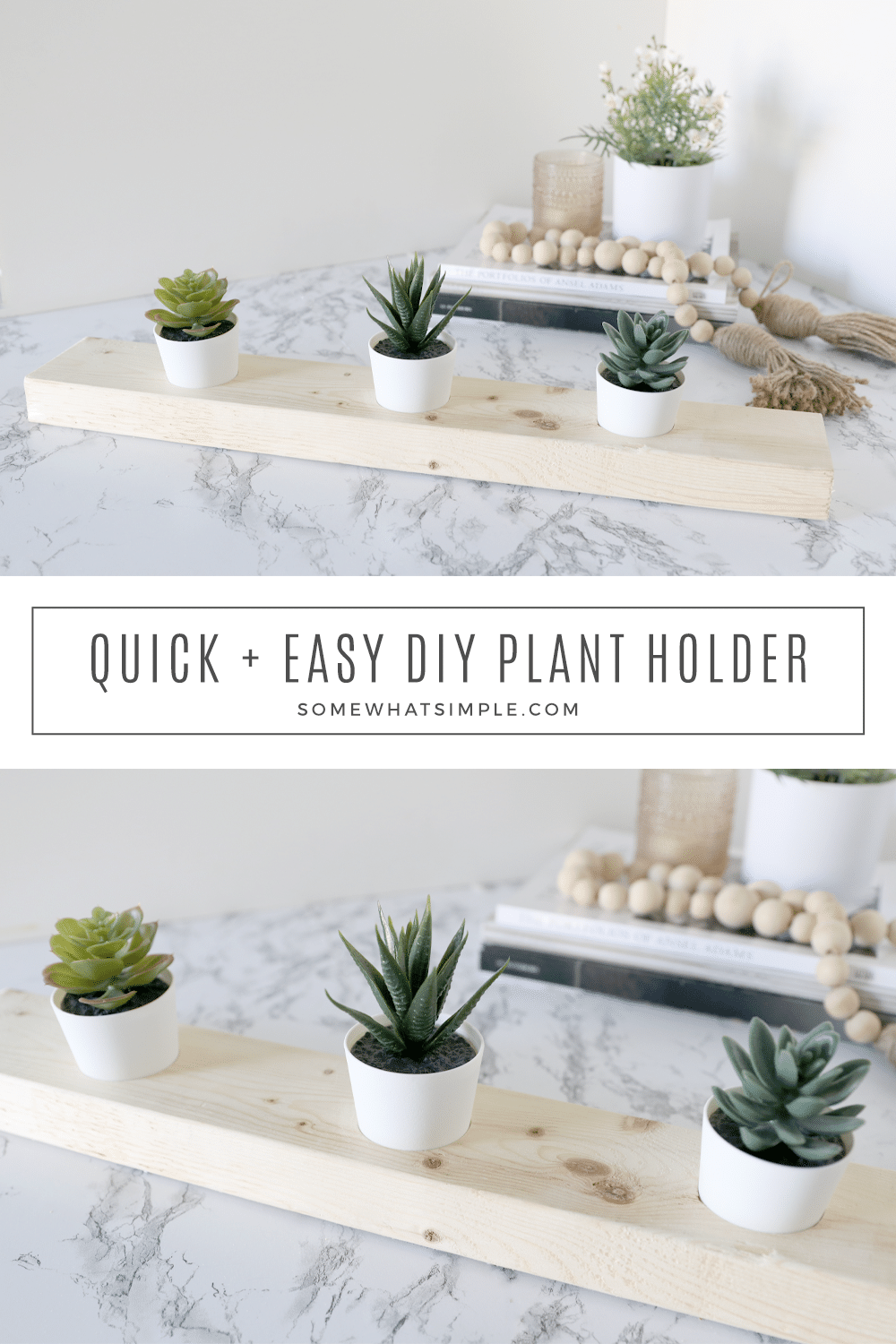 A DIY Succulent Planter that takes 5 minutes to make and costs less than $2! Simple, affordable, and fun! via @somewhatsimple