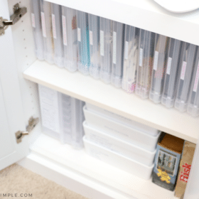organized game closet