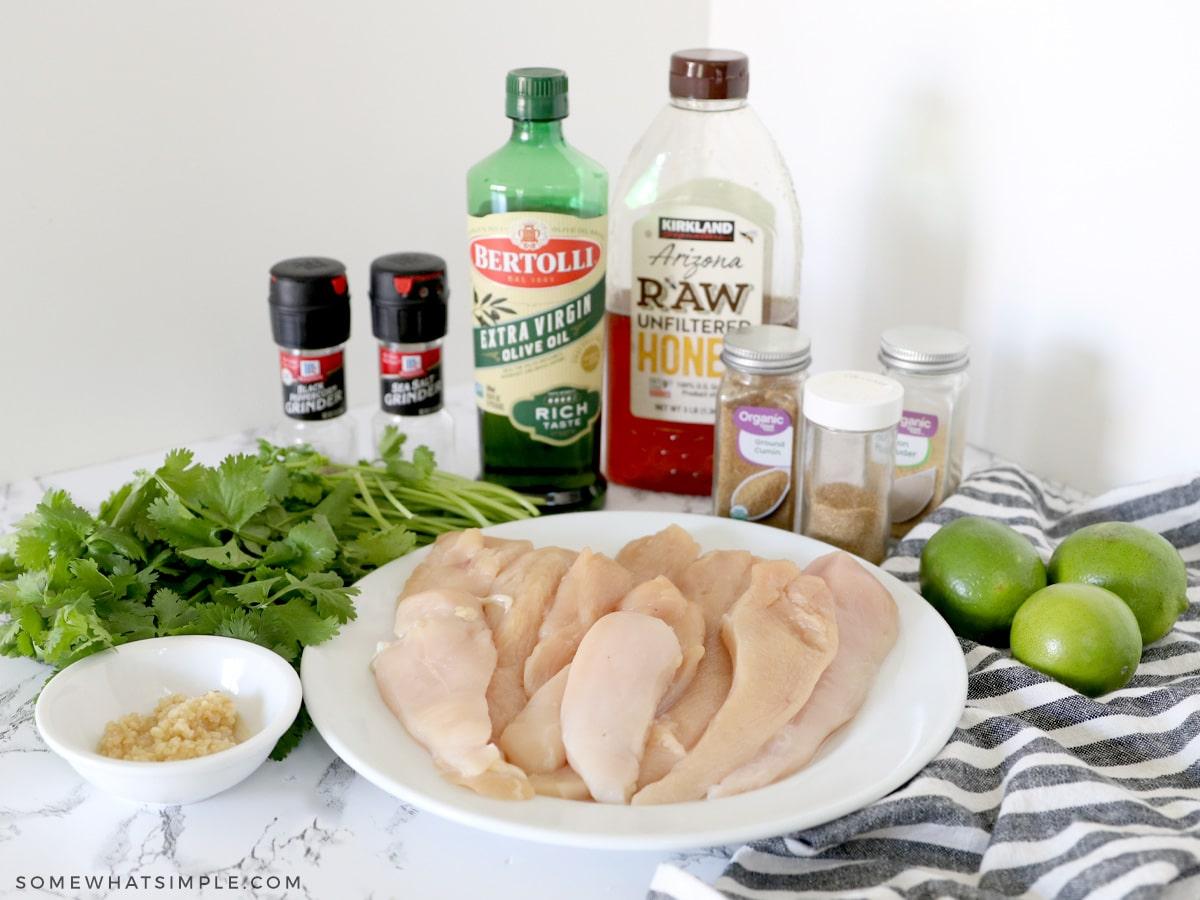 ingredients to make avocado salsa
