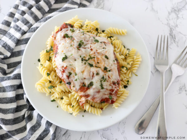 chicken pizzaiola served on top of rotini pasta